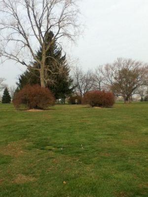 Sunnybrook, Main course, Hole 2 Midrange approach
