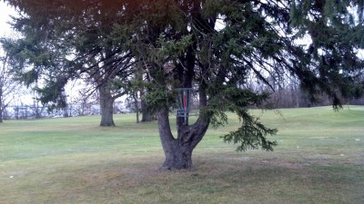 Sunnybrook, Main course, Hole 3 Putt