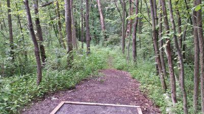 Blatnick Park, Main course, Hole 4 Tee pad