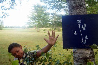 Pugwash DGC, Main course, Hole 5 Hole sign