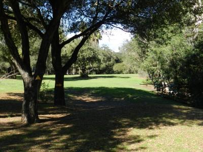 Brengle Terrace Park, Main course, Hole 12 Long approach