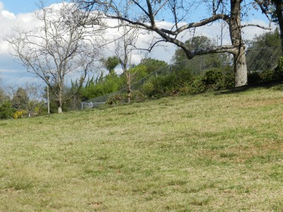 Brengle Terrace Park, Main course, Hole 17 Long approach