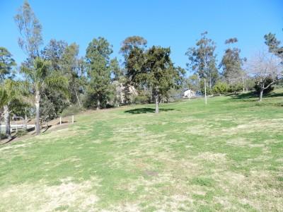 Brengle Terrace Park, Main course, Hole 16 Tee pad