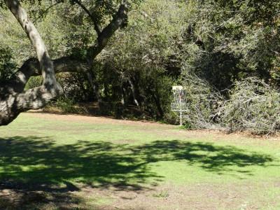 Brengle Terrace Park, Main course, Hole 12 Short approach