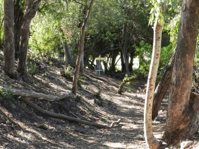 Brengle Terrace Park, Main course, Hole 5 Long approach