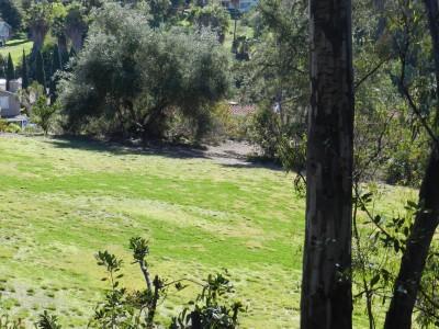 Brengle Terrace Park, Main course, Hole 8 Long approach