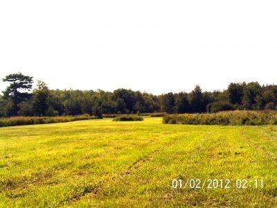 Ettyville DGC, Main course, Hole 7 Long tee pad