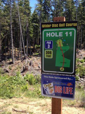 Wilder DGC, Main course, Hole 11
