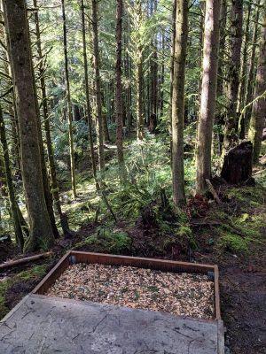 Wilder DGC, Main course, Hole 9 Tee pad