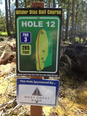 Wilder DGC, Main course, Hole 12