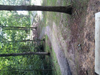 Greensburg Fitness Park, Main course, Hole 8 Tee pad