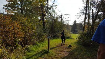 Tomlinson Run State Park, Main course, Hole 4 Tee pad