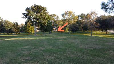 Lafreniere Park, Main course, Hole 19 Tee pad