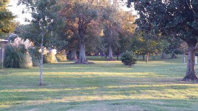 Lafreniere Park, Main course, Hole 22 Tee pad