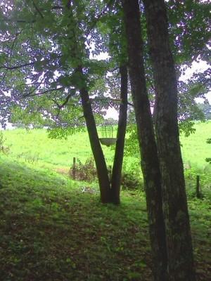 Simple Pleasures Farm, Simple Pleasures DGC, Hole 8 Short approach