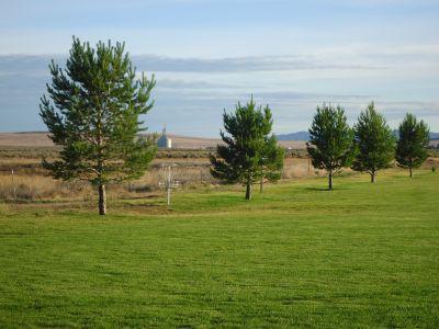 Optimist Park, Main course, Hole 3 Short approach