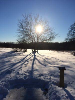 Deerfield Park, Wildwood, Hole 13 Long tee pad
