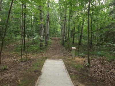 Deerfield Park, Wildwood, Hole 6 Long tee pad