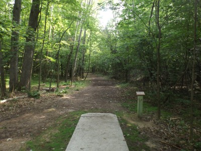 Deerfield Park, Wildwood, Hole 8 Long tee pad