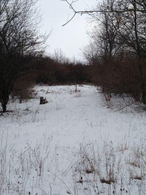 Deerfield Park, Wildwood, Hole 15 Long tee pad