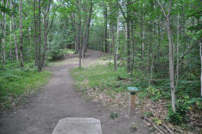 Deerfield Park, Wildwood, Hole 1 Long tee pad