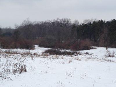 Deerfield Park, Wildwood, Hole 13 Long approach