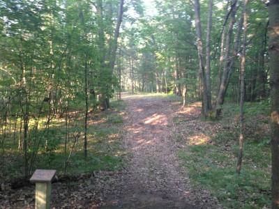 Deerfield Park, Wildwood, Hole 3 Long tee pad