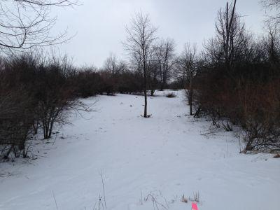 Deerfield Park, Wildwood, Hole 12 Long tee pad