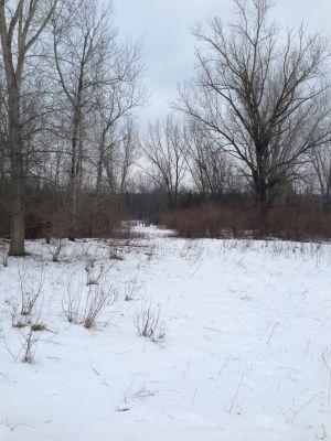 Deerfield Park, Wildwood, Hole 17 Long tee pad