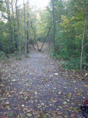 Flaherty Park, Main course, Hole 2 Short tee pad