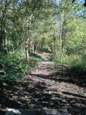 Flaherty Park, Main course, Hole 1 Short tee pad