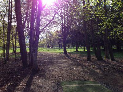 Alton Baker Park, Main course, Hole 2 Tee pad