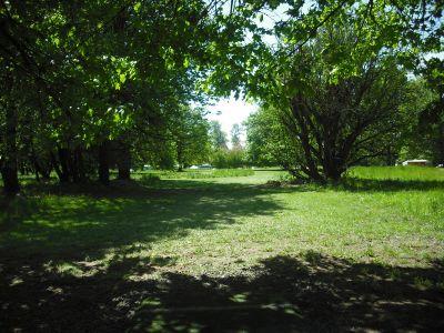 Alton Baker Park, Main course, Hole 18 Tee pad