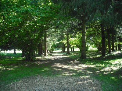 Alton Baker Park, Main course, Hole 10 Tee pad