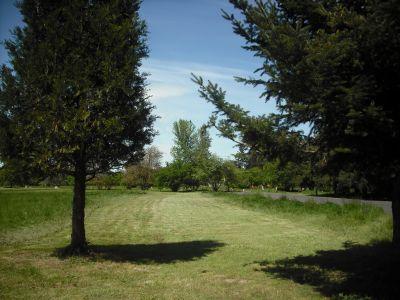 Alton Baker Park, Main course, Hole 12 Tee pad
