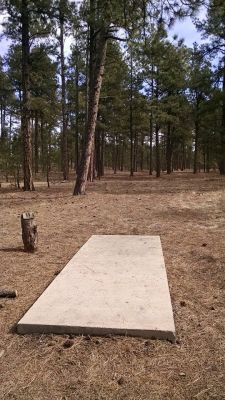 Sakuna Pines, Main course, Hole 11