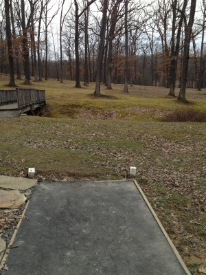 Hasson Park, Main course, Hole 8 Tee pad