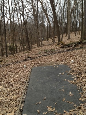 Hasson Park, Main course, Hole 4 Tee pad