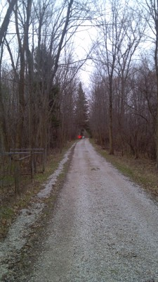 Warfield's Woods, Main course, Hole 10 Tee pad