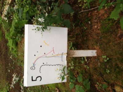 Dacey Fields, Main Course, Hole 5 Hole sign