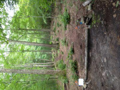 Dacey Fields, Main Course, Hole 7 Tee pad