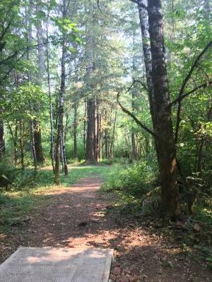 Camp Serene, Main course, Hole 16 Tee pad