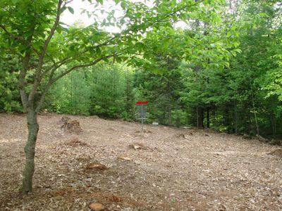 Dragan Field, Main course, Hole 14 Putt