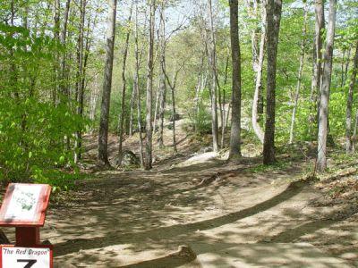 Dragan Field, Main course, Hole 7 Tee pad