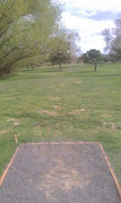 Wide Hollow DGC, Main course, Hole 5 Tee pad