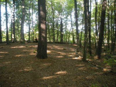 SMASH Park, Main course, Hole 8 Short approach