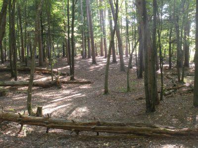 SMASH Park, Main course, Hole 2 Midrange approach