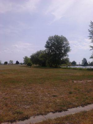 Ludington Park, Main course, Hole 2 Tee pad