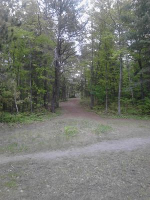 Powder Mill DGC, Main course, Hole 6 Long tee pad