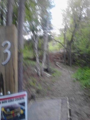 Powder Mill DGC, Main course, Hole 3 Short tee pad